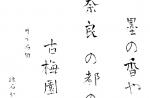 青柳疎石フォント