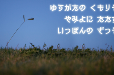 font-mihon-cnmgo_1