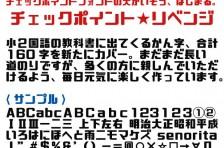 チェックポイント★リベンジ